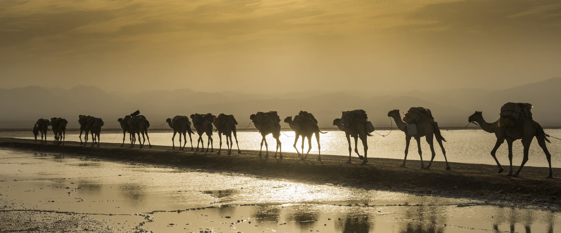 10 days expedition to danakil and tigray